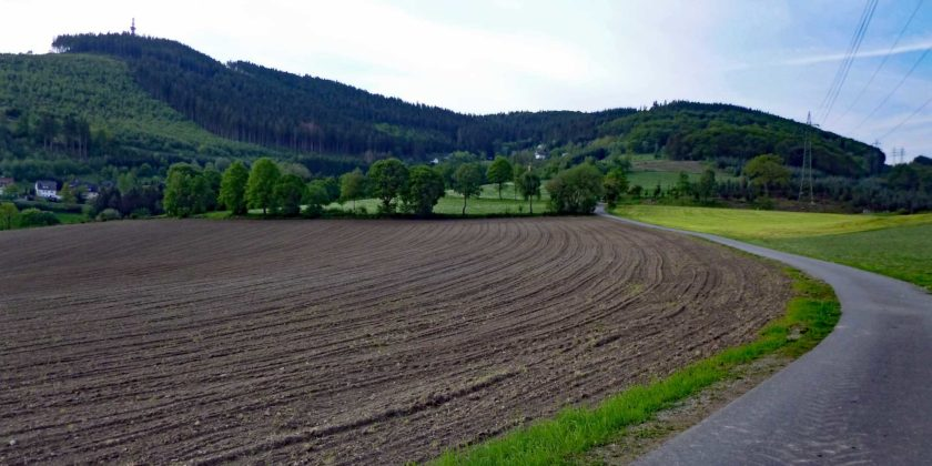 Landeplatz Stüppel mit Mais bestückt